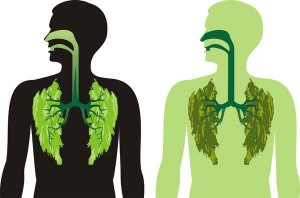 Green gap green lungs